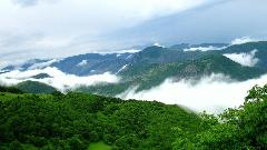 3-Day Hyrcanian Forests Adventure Tour from Golestan