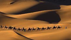 Varzaneh Desert Tour