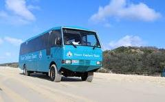 Premium Fraser + Remote Fraser Island and Whale Experience Package