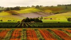 Exclusively driven Barossa Experience - Discover Historic Hutton Vale Farm and Henschke