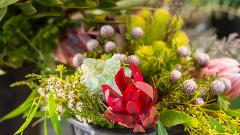Two Icons in one – The R.M.Williams Factory and an Adelaide Hills Flower Farm