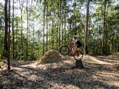 Ourimbah Forest Traverse & Bike Park Adventure