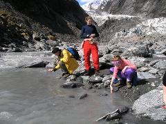 Explore Franz Josef Glacier & Wildlife Centre