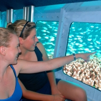 2 Day Reef & Kuranda Package with Cairns Transfers