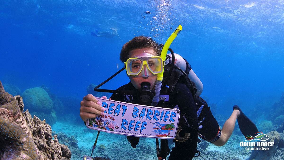 down under cruise dive reef day tour trek north. Black Bedroom Furniture Sets. Home Design Ideas