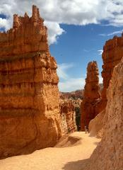 One-way Shuttle: Springdale (Zion area) to Bryce Canyon National Park