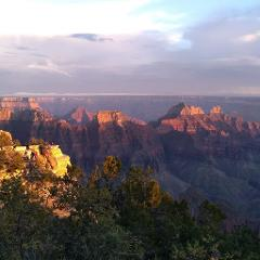 Grand Canyon to Flagstaff Shuttle