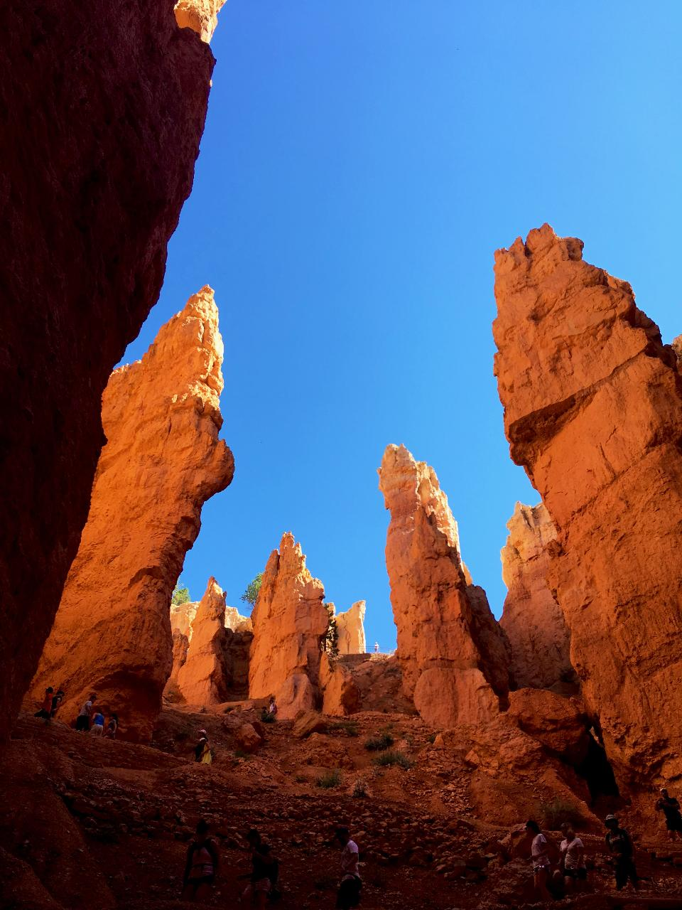 Bryce Canyon and Zion National Parks Tour From Las Vegas