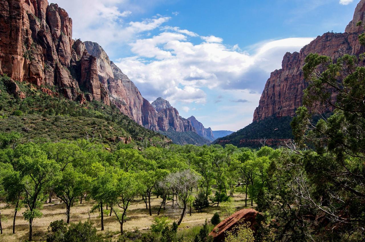 One-way Shuttle: St. George to Zion National Park Shuttle