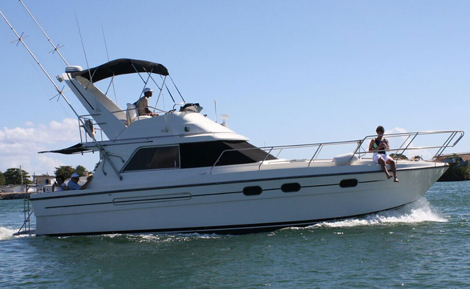 PRIVATE CHARTER - Jus Chillin 35ft Princess Yacht DAY CHARTER (4 hours between 8am - 5pm)