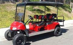 AMI 6 Passenger Golf Cart Rental- Daily