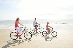 Segs Bicycle Rental