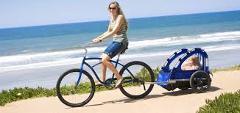 Sunshine Child's Bike Trailer Rental
