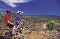 Mountain Bike Hire - 1 hour