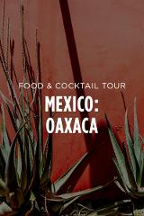 Mexico Food & Cocktail Tour || Oaxaca City
