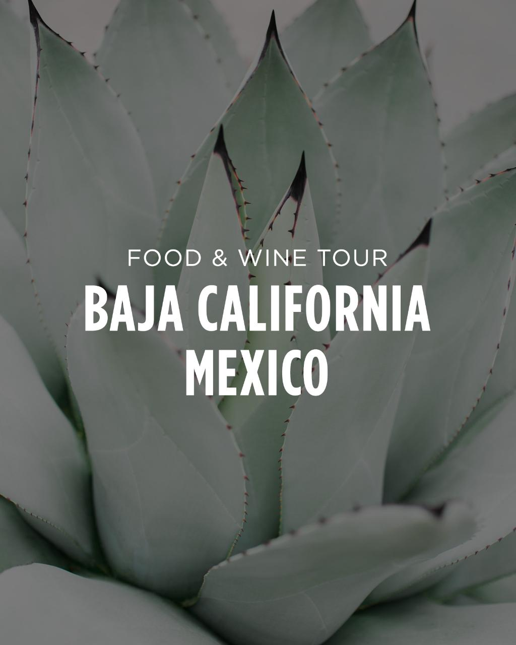 Baja California, Mexico || Food & Wine Tour