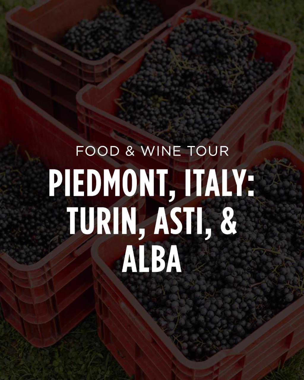 Italy Food & Wine Tour || Piedmont: Turin, Asti, Alba, & Wine Country