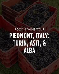 Italy Food & Wine Tour || Piedmont: Turin, Asti, Alba, & Wine Country