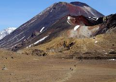 Tongariro Alpine Crossing Shuttle from Turangi (Summer only)
