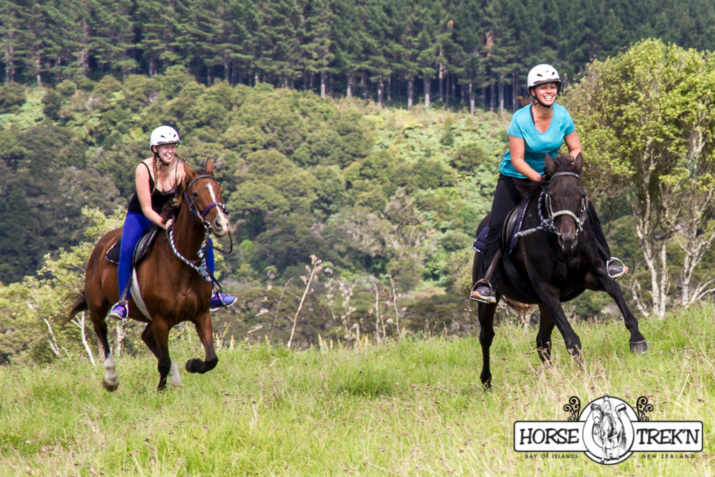 Forest & Hillside Trek