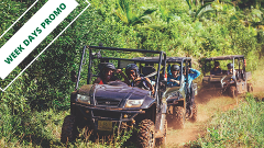 WEEK DAYS PROMO - Discovery Trail Eco-Buggy