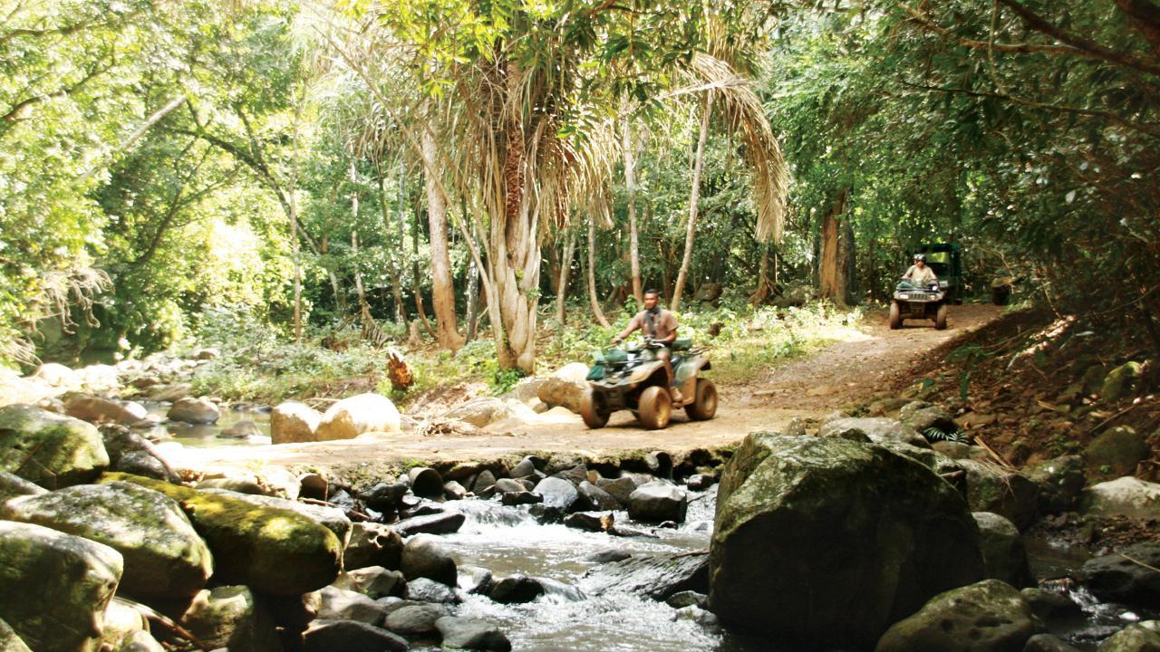 Mauritian Wildlife Trek at Frederica Nature Reserve