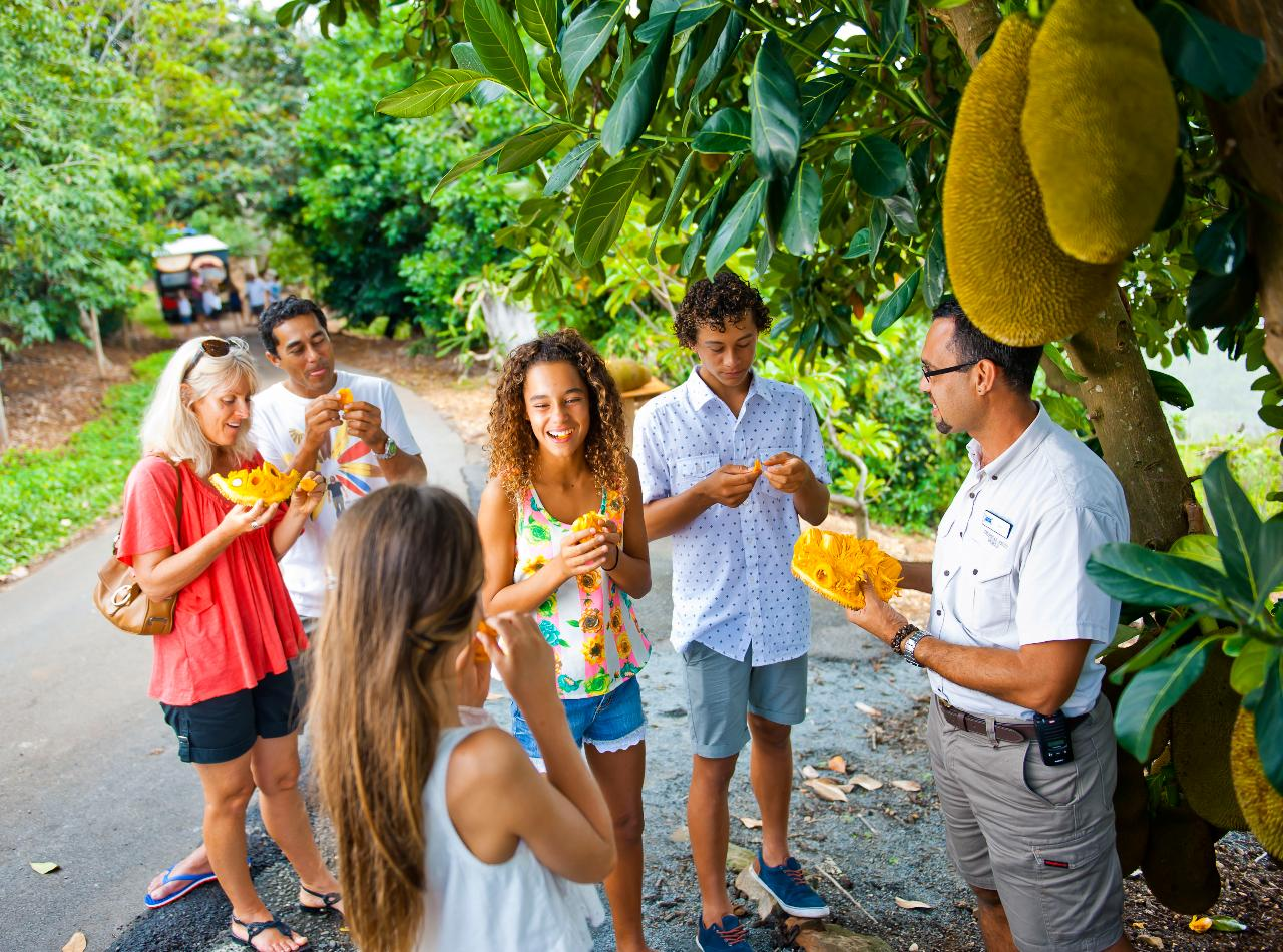 TROPICAL FRUIT WORLD FARM TOUR
