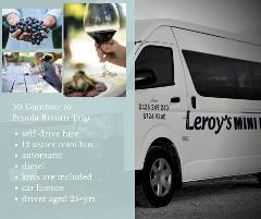 Mount Gambier to Penola/Coonawarra Trip - 12 Seater - Self-Drive Hire