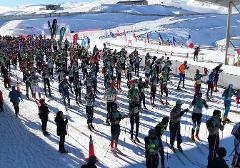 Merino Muster - 42km Marathon Entry