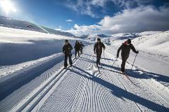 Bus Transport & Half Day Cross Country Ski Experience