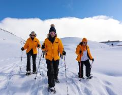 Overnight Snowshoe Trail Pass and Rental Package