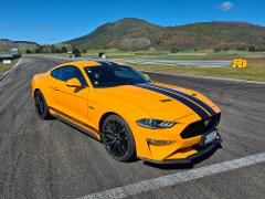 Drive a Ford Mustang