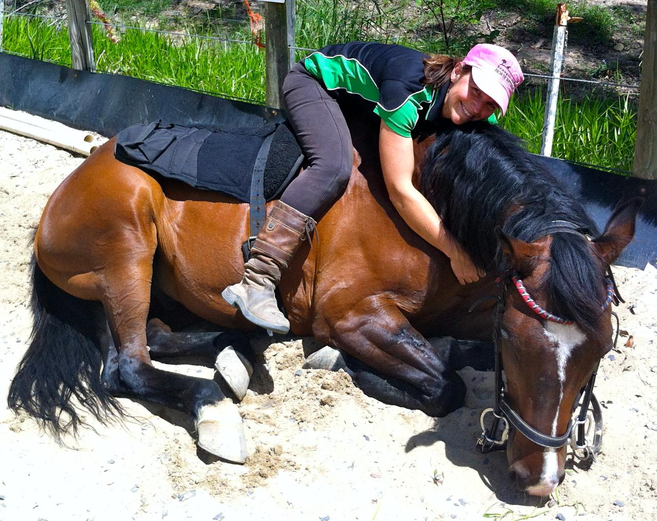 60min Riding Lesson & Horse Connection