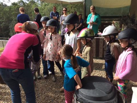 Giddy Up Kids 60min Horse Intro Class
