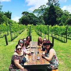 Full Day Mount Tamborine Winery Tour - Brisbane Pickup - Small Group Tour