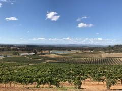 Hermitage Boutique Winery Tour from the Hunter Valley