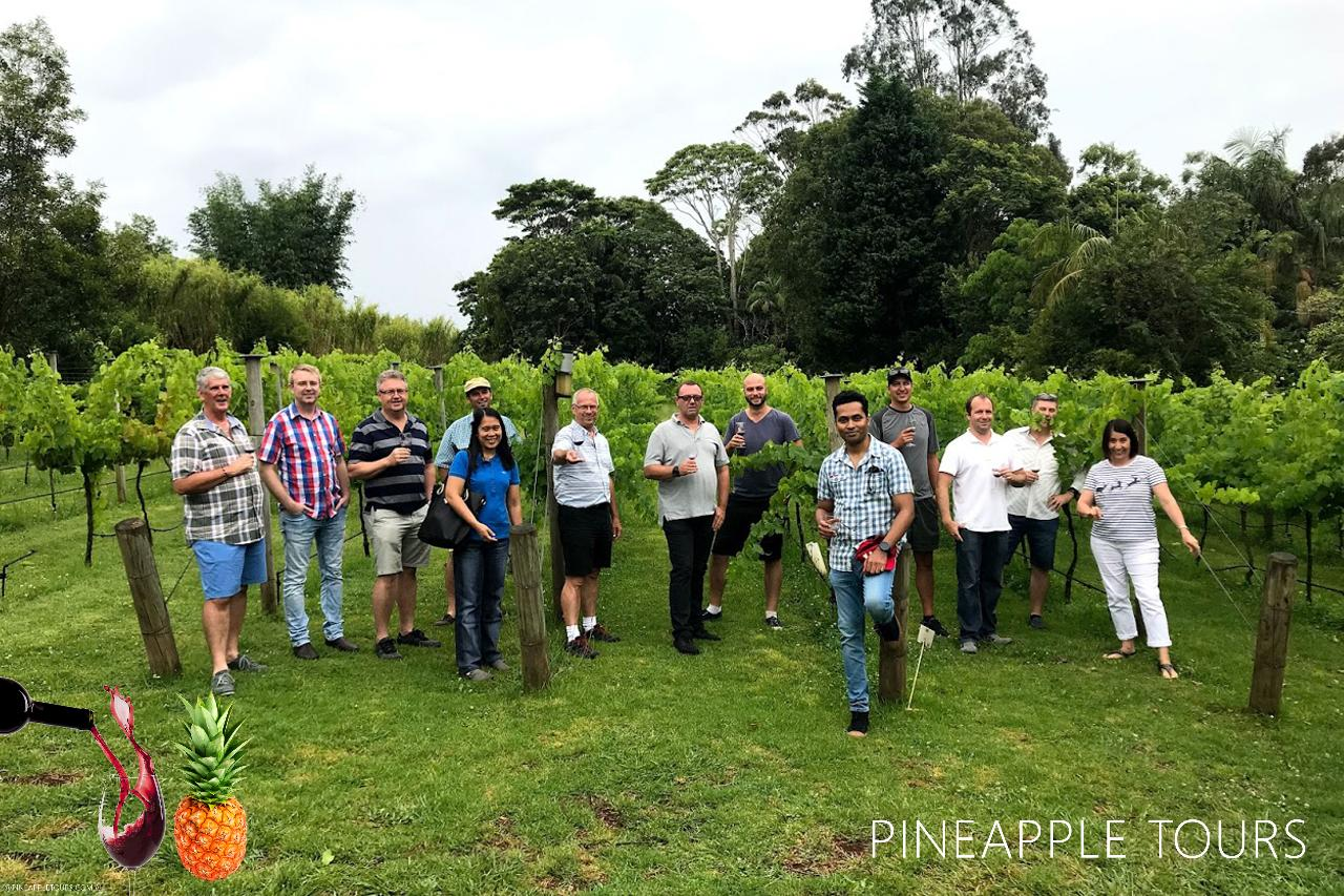 Full Day Mount Tamborine Winery Tour - Gold Coast Pickup