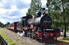 The Classic Rattler Run - Departs Saturdays Gympie to Amamoor (Return)