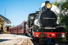 Fathers Day Train - Departs Sundays Gympie to Amamoor (Return)
