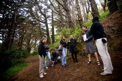 Lord of the Rings & Weta Workshop