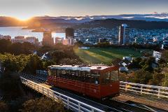 Wellington Hop on Hop off Bus - Everyday AND Wellington Shore Excursion