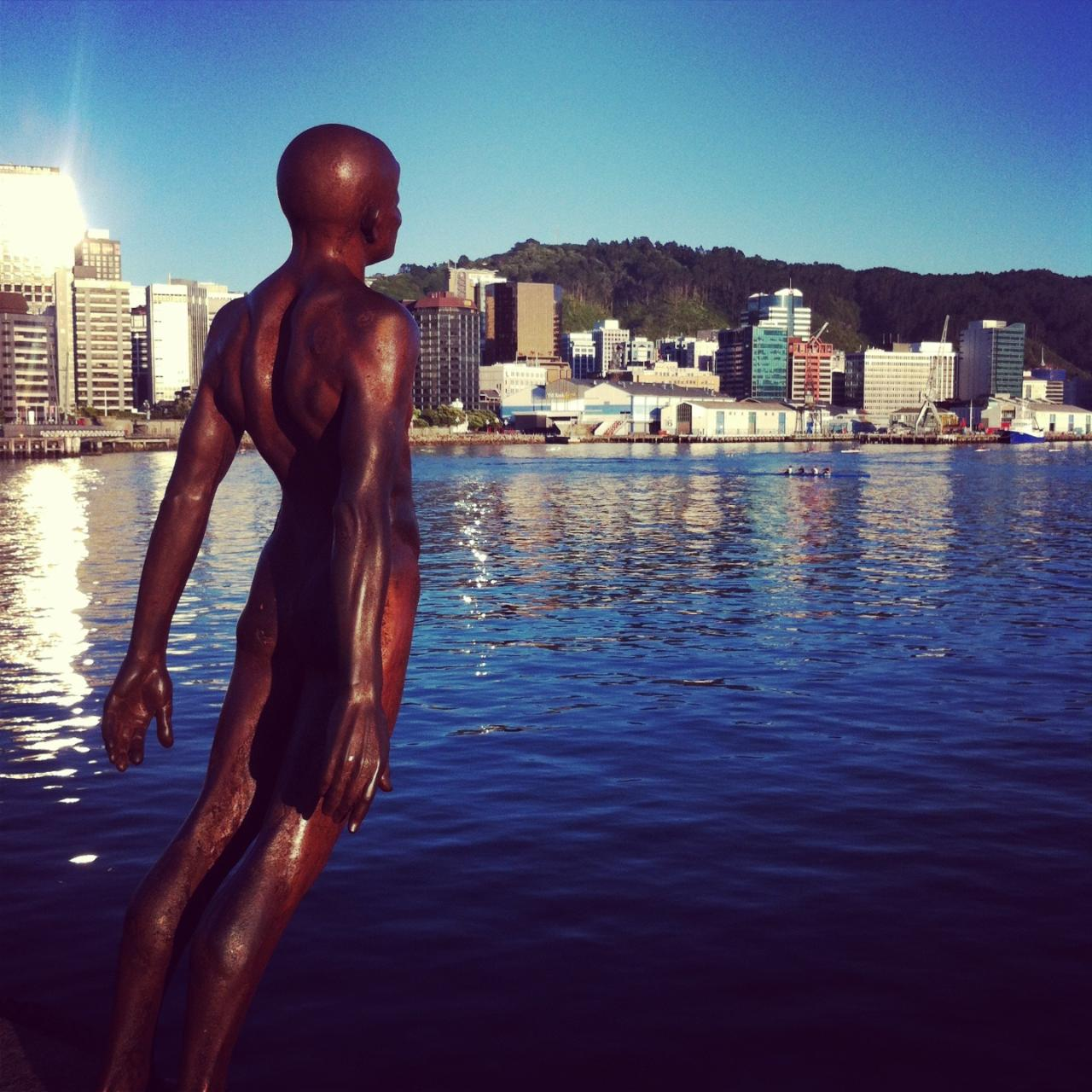 Colours of Wellington - Private City Highlights Tour