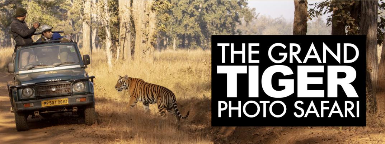 The Grand Tiger PhotoSafari – Information Session