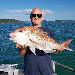 Snapper Morning