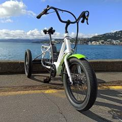 Electric Trike Hire - Half Day (Up to Four hours)
