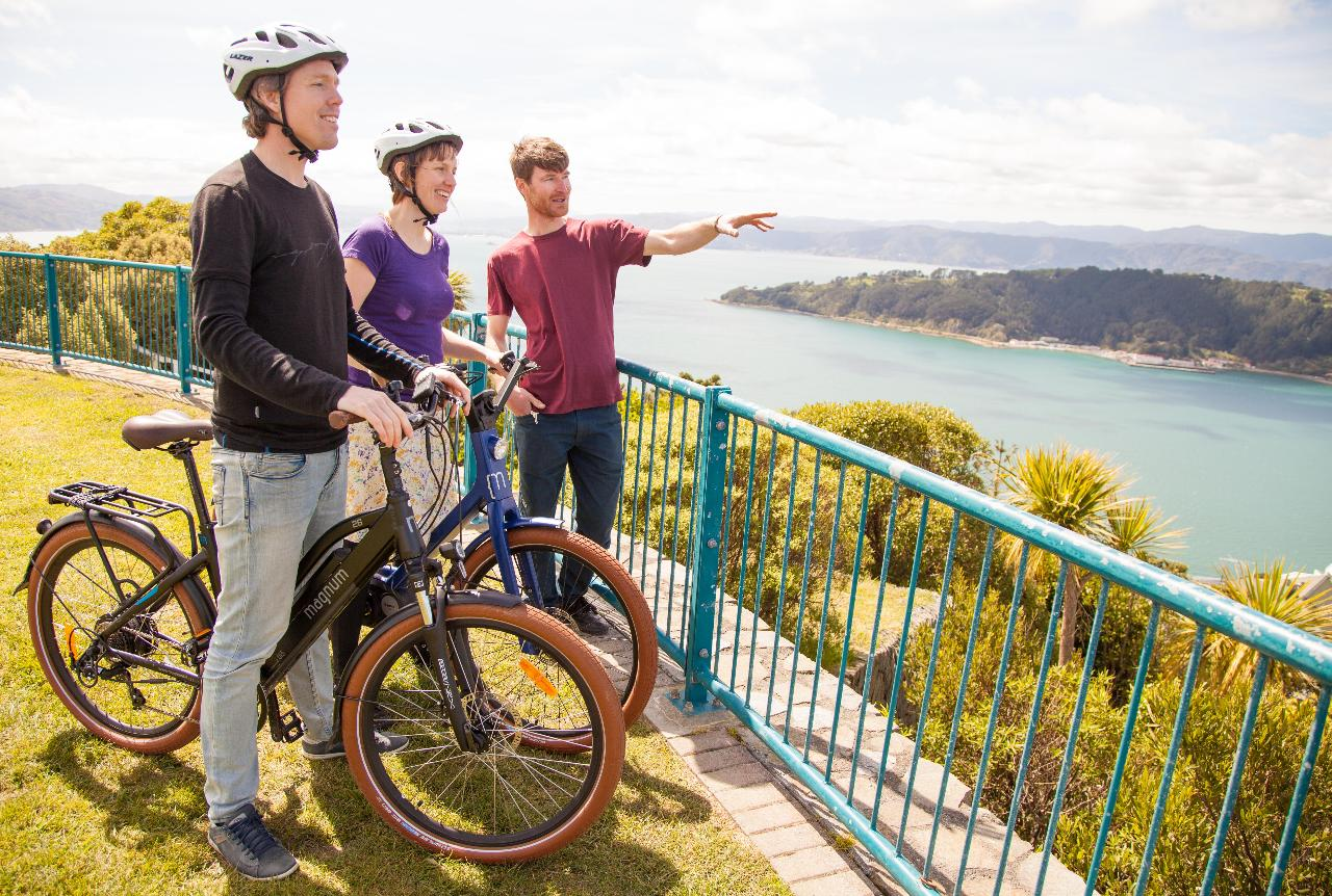 Electric Bays Tour - Guided Electric Bike Tour in Wellington (3-4 hours)