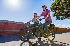Intro to Wellington - Guided Bike Tour in Wellington (2 - 2.5 hours)