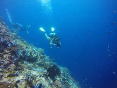 2 Dive Trip - China Wall and Cherubs Cave