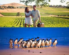 Mornington Peninsula & Phillip Island - Private Tour