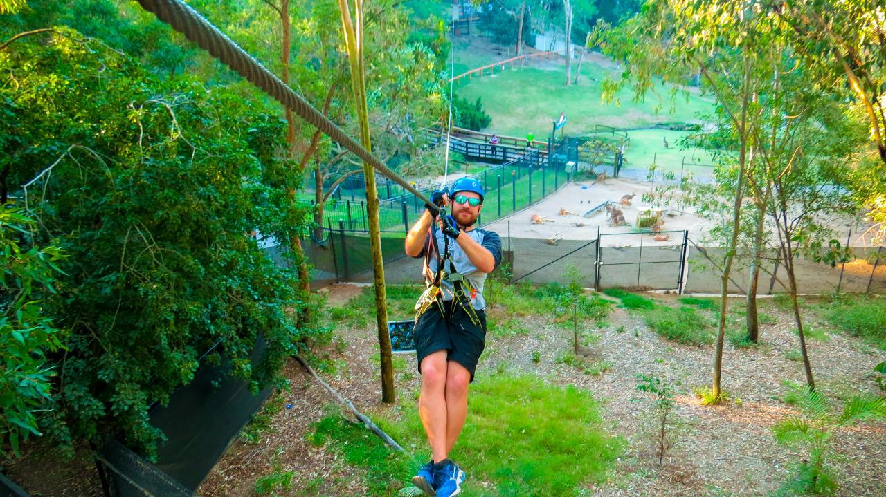 TreeTop Challenge – Currumbin Wildlife Sanctuary